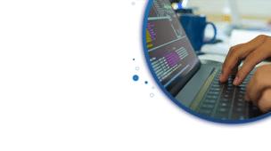 ICMS para Software